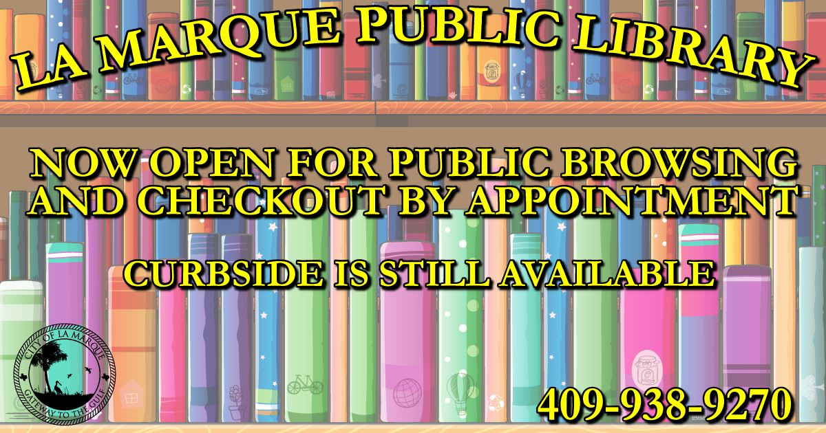 Library Open November 2020 Graphic